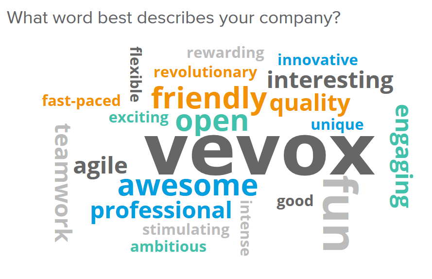 Word cloud polling with the Vevox tool and system